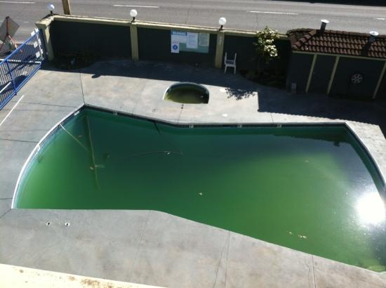 Solda Service What To Do If My Pool Turns Green Solda Pools