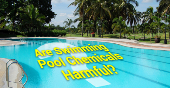 Are Swimming Pool Chemicals Harmful Solda Pools