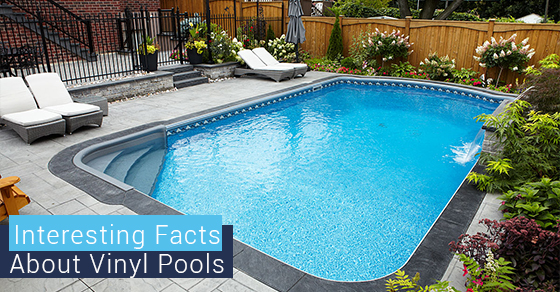 Interesting Facts About Vinyl Pools