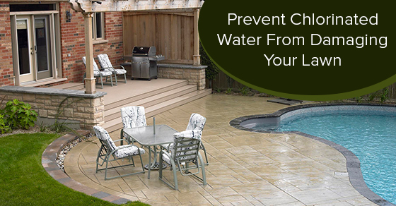 Prevent Chlorinated Water From Damaging Your Lawn