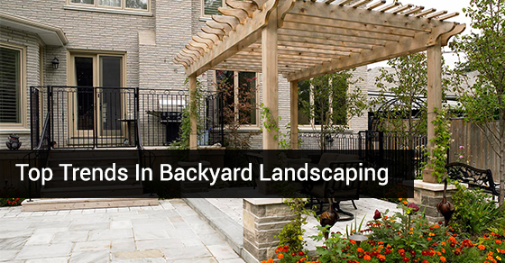Top Trends In Backyard Landscaping